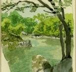 Le rocher au bord du lac